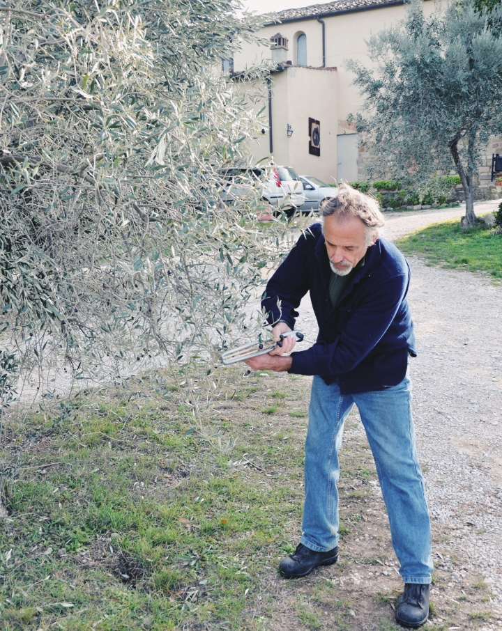 oliveoilguy.jpg